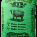 Cold-Grazer-Rye-Seed-1