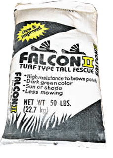 Falcon-II-Turf-Type-Tall-Fescue-Lawn-Grass-Seed