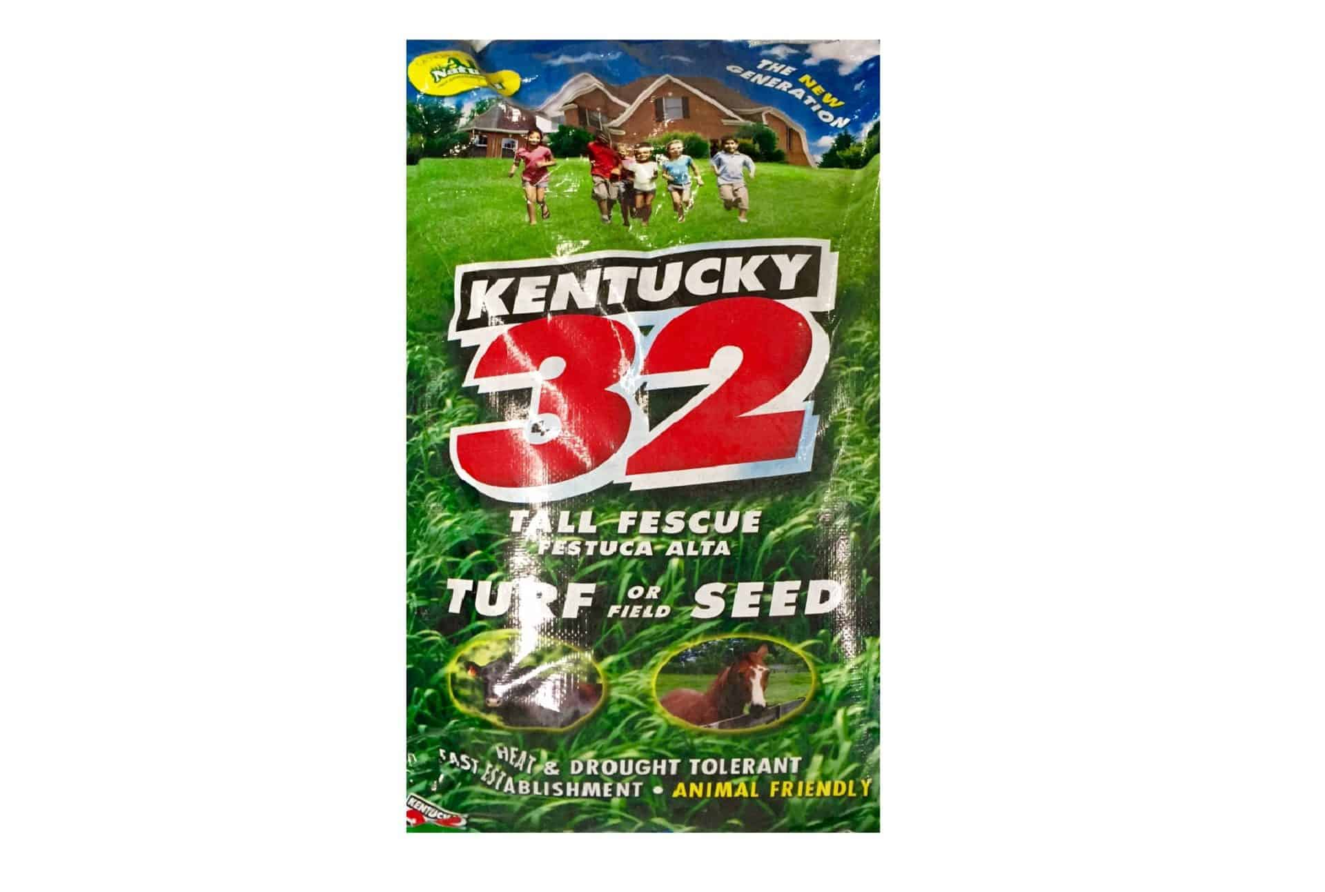 Ky 32 Tall Lawn Fescue Lawn Grass Seed Seed Pellet